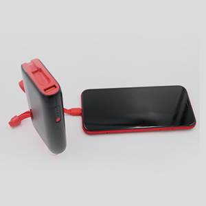 Pivoi 10000mAh Power Bank With Built-in Lightning Cable